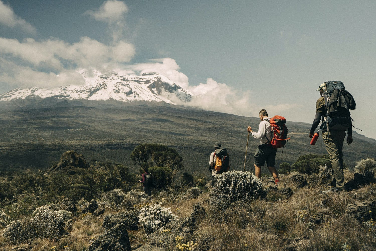 Seeing Is Believing The Evaporation Of Mount Kilimanjaro